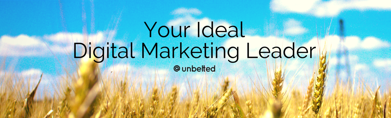 Your Ideal Digital Marketing Leader | unbelted.net