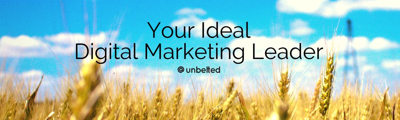 Your Ideal Digital Marketing Leader   unbelted.net